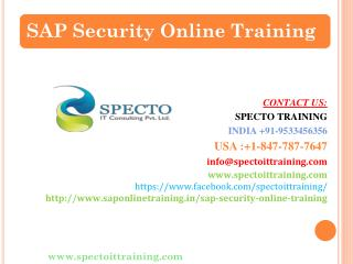 sap security best online training education institute-spectotrainings
