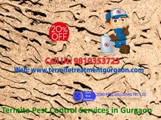 Call Termite Pest Control Services in Gurgaon on 9810353723