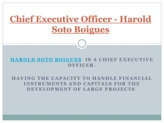 Chief Executive Officer - Harold Soto Boigues