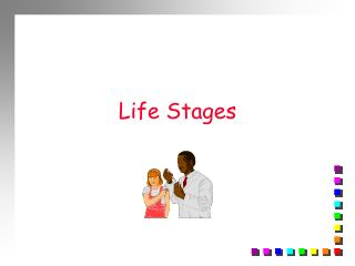 Life Stages