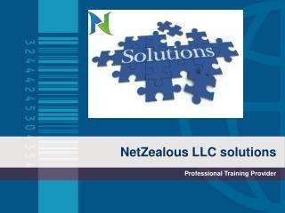 Netzealous LLC Solutions