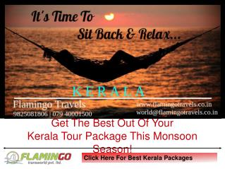 Highly Demanding Kerala Tour Packages For Monsoon | Flamingo Travels