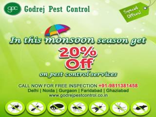 Pest control faridabad