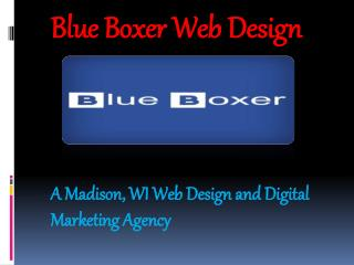 Blue Boxer Web Design