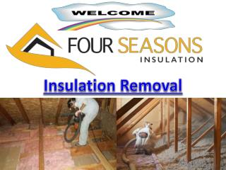 Efficient Insulation Removal Services Toronto