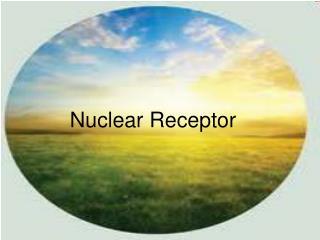 nuclear receptor