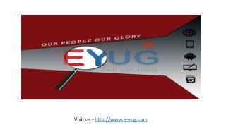 We Delivered Dedicated Web services