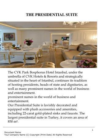 Cvk park bosphorus presidential suite