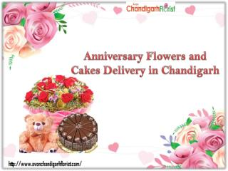 Send Anniversary Flowers and Cakes to Chandigarh