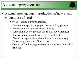 Asexual propagation  production of new plants without use of seeds