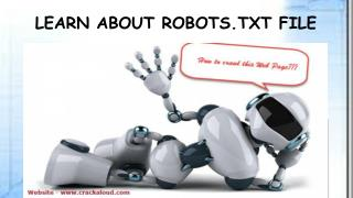 The Easiest Tutorial To Learn About Robots.txt File