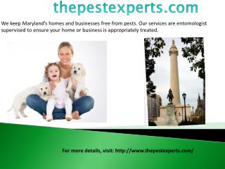 Bed Bug Pest Control Baltimore