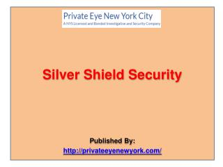 Silver Shield Security LLC