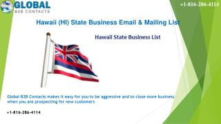Hawaii State Business Email & Mailing List