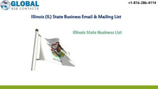Illinois  State Business Email & Mailing List