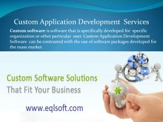 Custom Application Software Development