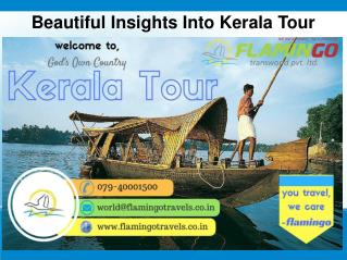 Beautiful Insights Into Kerala Tour