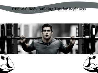 Essential Body Building Tips for Beginners