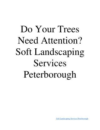 Soft Landscaping Services Peterborough