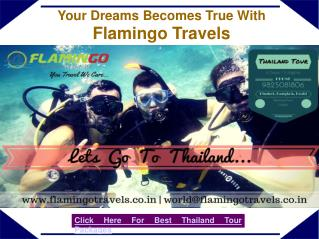 Rejoice Your Holidays By Thailand Tour Packages – Flamingo Travels
