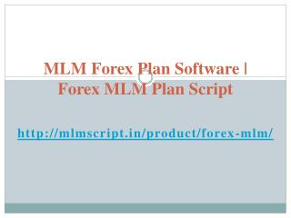 Forex MLM Plan Script | MLM Forex Plan Software