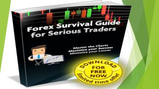 Black Diamond Trader 2 Review|Black Diamond Trader 2 System – scam or not?