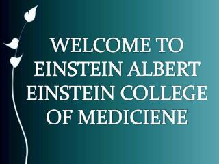 Master Bioethics in Bronx