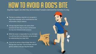 How to avoid a dog�s bite