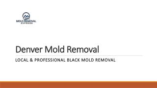Professional non-viable mold testing services