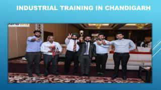 6 weeks Industrial training in Chandigarh