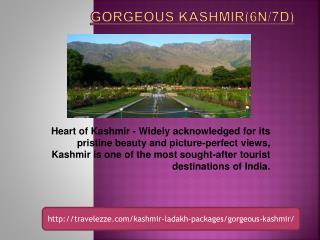 Gorgeous Kashmir(6N/7D)