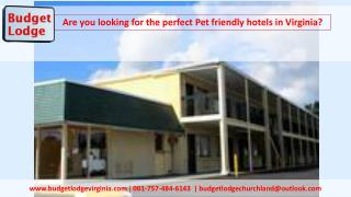 Are you looking for the perfect Pet friendly hotels in Virginia?