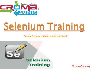 Selenium training institute in Noida