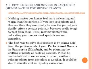 All city packers and movers in santacruz (mumbai) – tips for moving plants