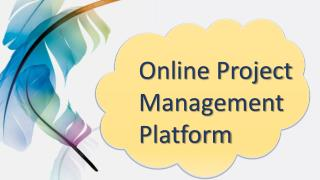 Online Project Management Platform