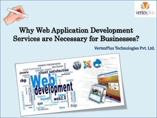 Why Web Application Development Services are Necessary for Businesses?
