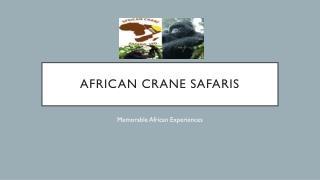 Book Best Deals Uganda Safari Tours | African Crane Safaris