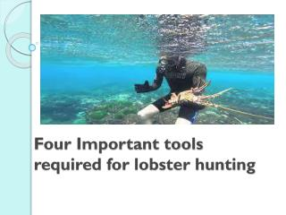 Four Important tools required for lobster hunting