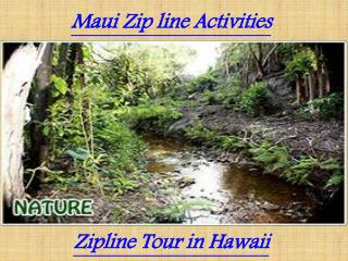 Maui Zipline Activities