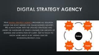 Digital Strategy Agency