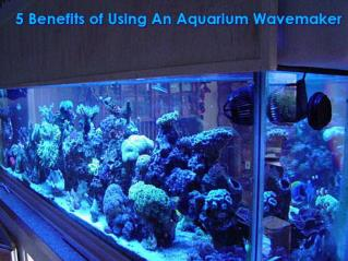 5 Advantages of Aquarium wavemaker
