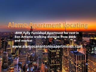 2BHK Fully Furnished Small Apartment for rent in San Antonio