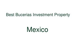 Best Service Real Estate Agent Bucerias Mexico