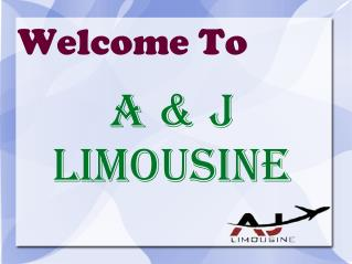 A and J Limousine Pdf