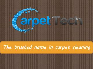 Carpet Cleaning Services in Bondi