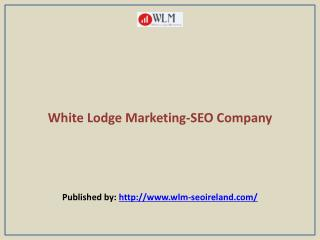 White Lodge Marketing-SEO Company
