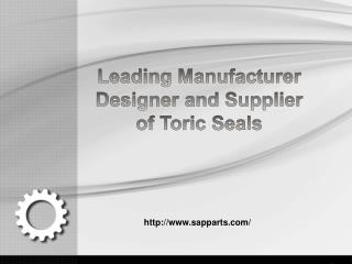 Leading Manufacturer Designer and Supplier of Toric Seals