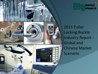 Puller Locking Buckle Industry Report - Global and Chinese Market Scenario