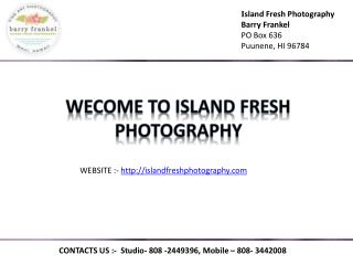 Portrait photographers on maui