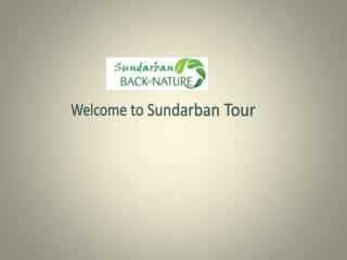 Tourist Attraction of Sundarban